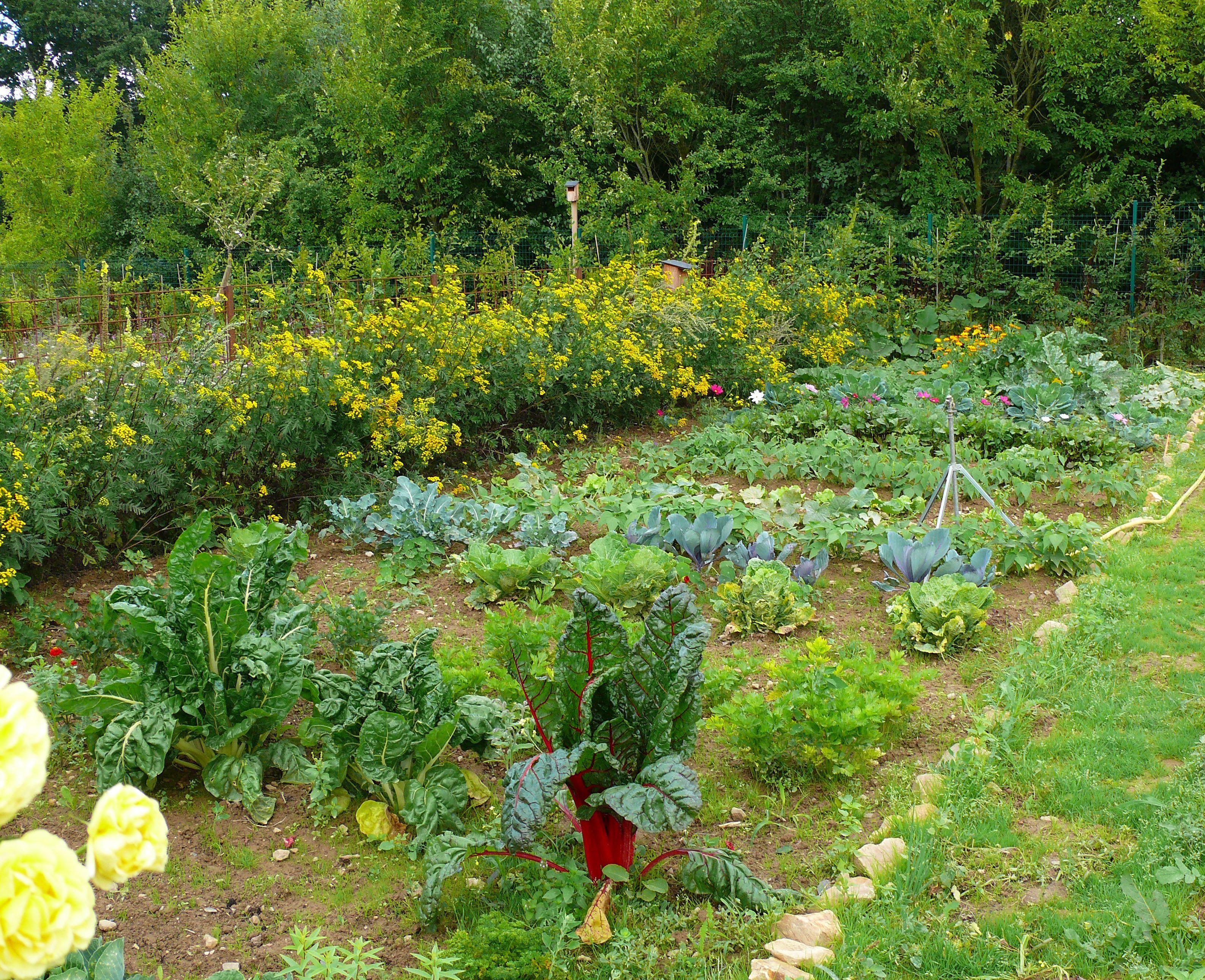 le guide de la permaculture urbaine pdf