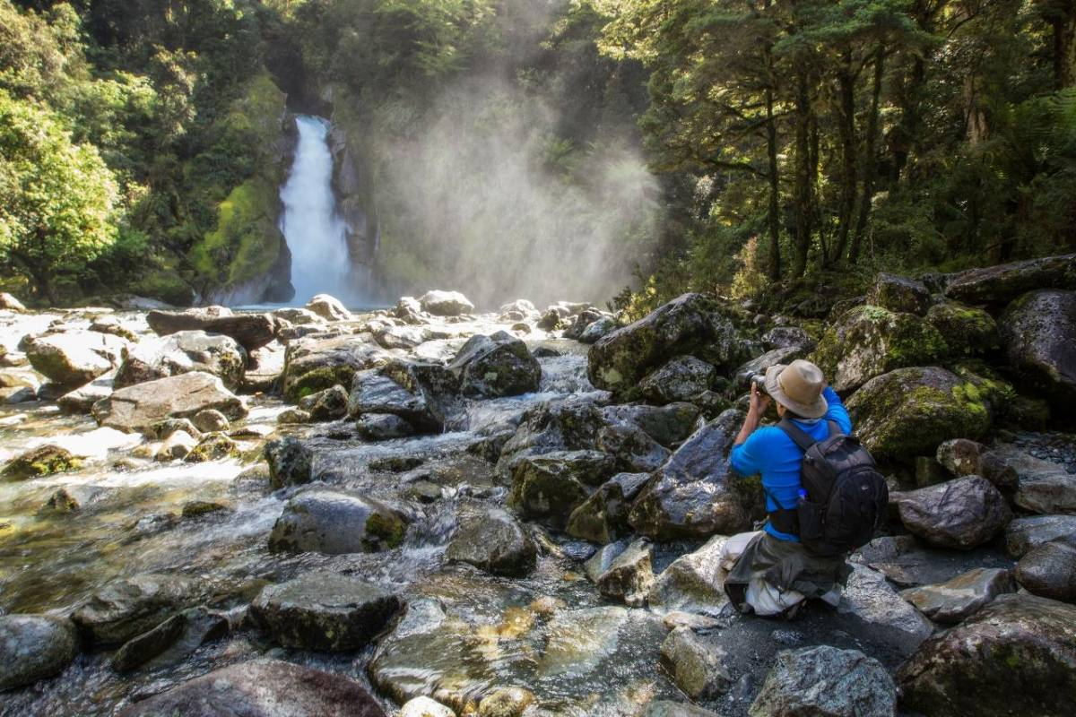 milford track guided walk prices