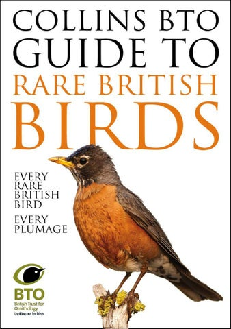 collins bird guide app android