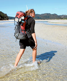 wilsons abel tasman guided walks