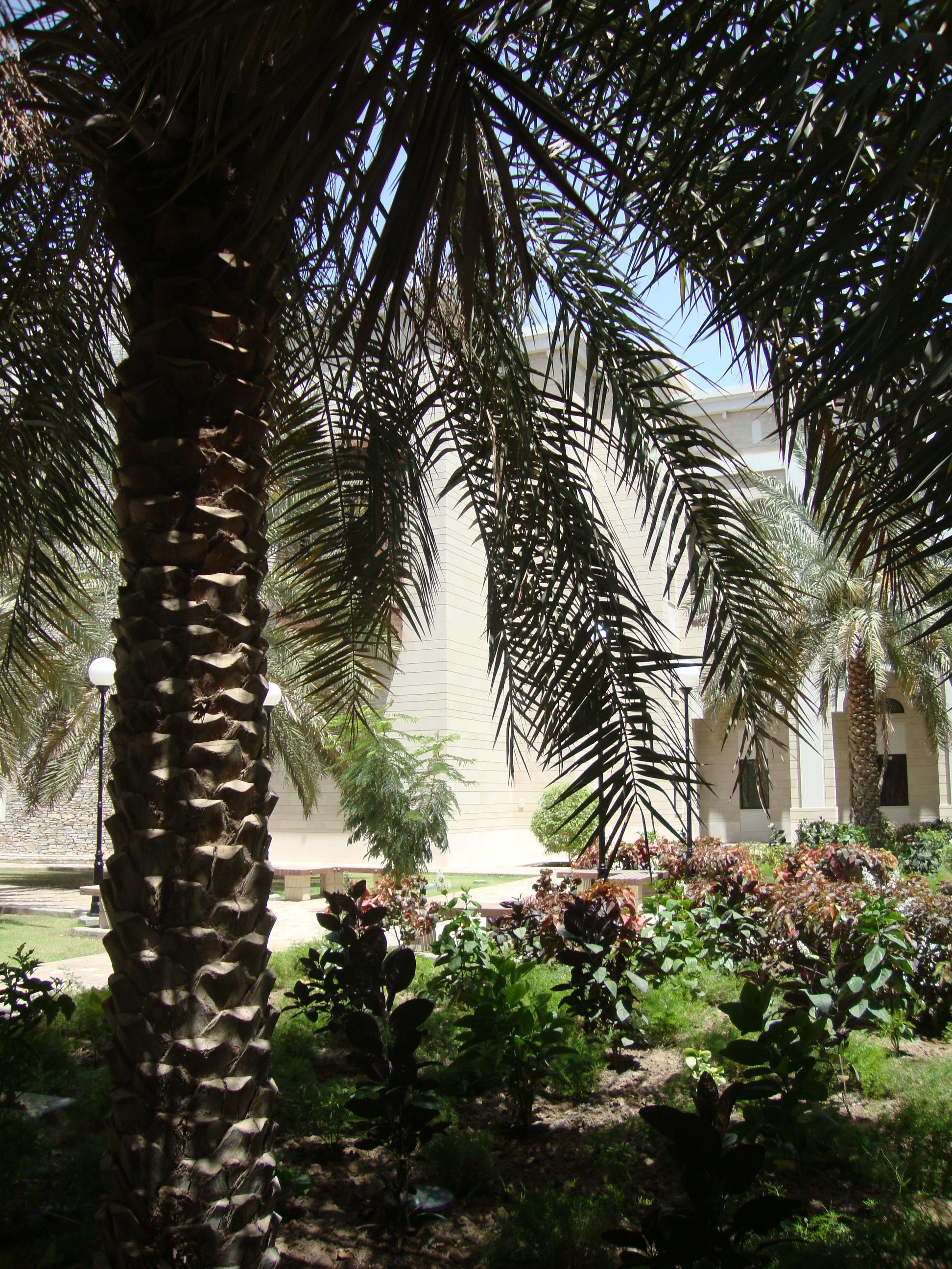 guide for new teachers sultan qaboos university