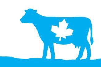 canada food guide milk servings