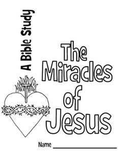 the age of miracles study guide