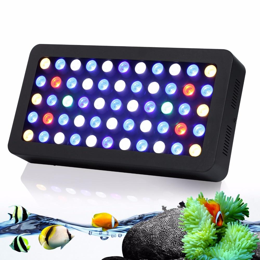 tropical fish aquarium lighting guide